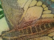 Detail of the pointillism technique: thousands of dots to create a whole.